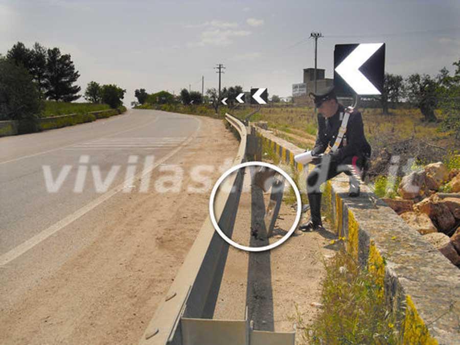 Dettaglio del guard-rail dopo l'impatto con la moto. Incidente mortale avvenuto a Monopoli l'1 maggio 2009